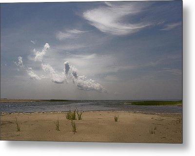 Metal Print featuring the photograph Wellfleet Shore by Michael Friedman