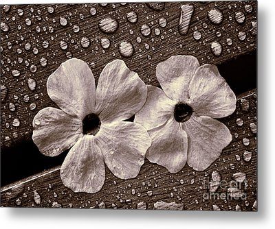 Wet Flowers And Wet Table Metal Print by Ari Salmela