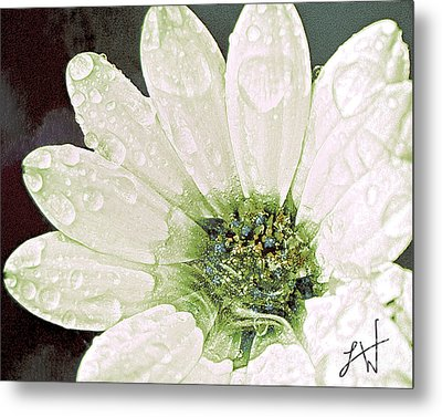 Metal Print featuring the digital art Wet Petals by Artist and Photographer Laura Wrede