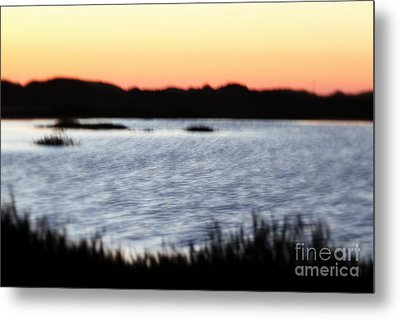 Metal Print featuring the photograph Wetland by Henrik Lehnerer