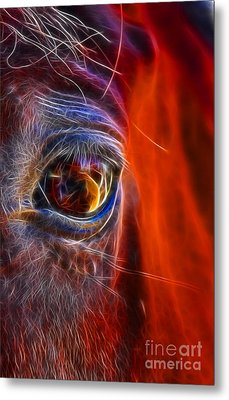 What Are You Looking At Now? Metal Print by Mariola Bitner