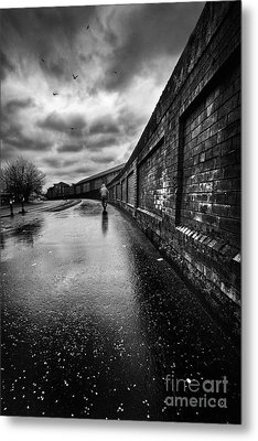 What Do I Know Metal Print by John Farnan