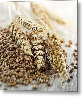 Wheat Ears And Grain Metal Print by Elena Elisseeva