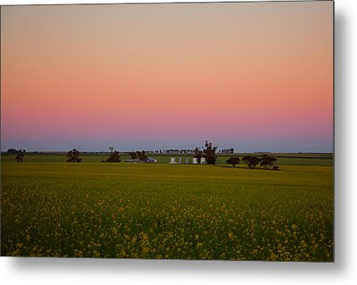 Wheatbelt Country Metal Print