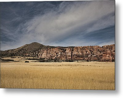 Metal Print featuring the photograph Wheatfield Zion National Park by Hugh Smith