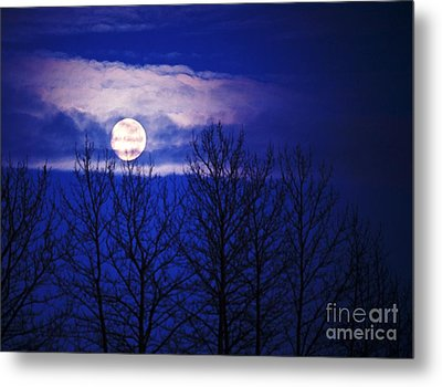 When All The World's Asleep Metal Print by Ronnie Glover