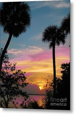 When Day Is Done Metal Print by Judy Via-Wolff