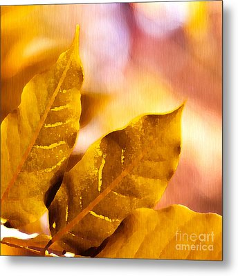 When Leaves Turn Gold Metal Print by Artist and Photographer Laura Wrede