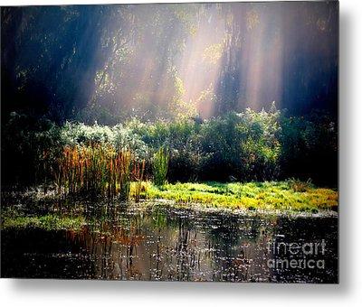 When Morning Hits The Marsh Metal Print by Carol Groenen