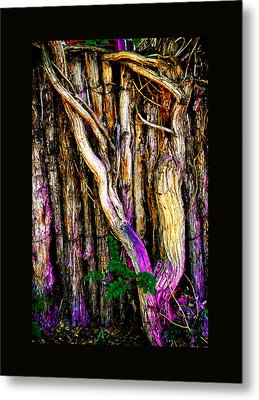 Metal Print featuring the photograph When Sound Is Color by Susanne Still