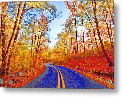Where The Road Snakes Metal Print by Douglas Barnard
