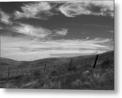 Metal Print featuring the photograph Whipping Up The Hillside by Kathleen Grace