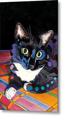 Whiskers Metal Print by Bob Coonts
