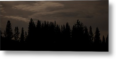 Whispering Pines Metal Print