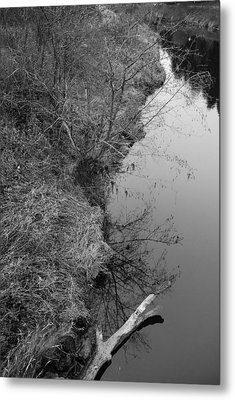 Metal Print featuring the photograph White Branch Riverside  by Kathleen Grace