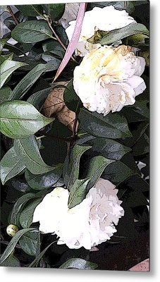 White Camellia Metal Print by Mindy Newman