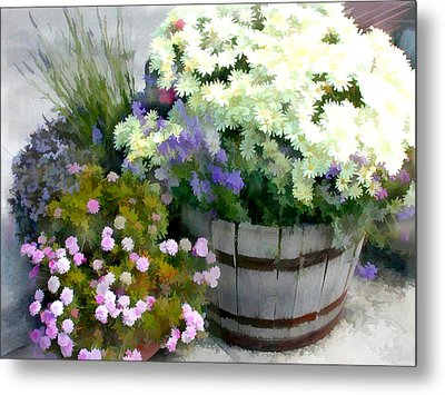 White Chrysanthemums In A Barrel Metal Print by Elaine Plesser