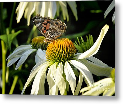 Metal Print featuring the photograph White Cone Flower With Angel by Nava Thompson