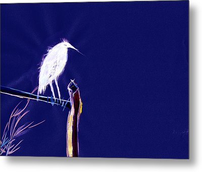 White Egret Metal Print by Anil Nene