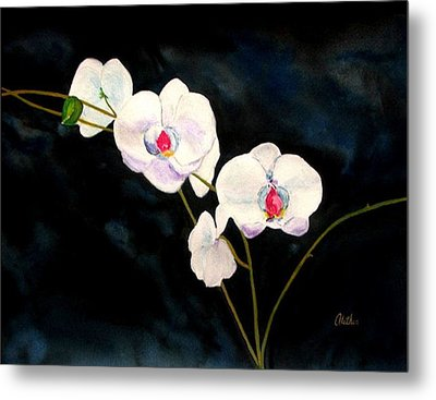 White Orchids Metal Print by Alethea McKee