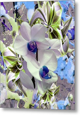 White Orchids And A Touch Of Blue Metal Print by Doris Wood