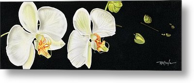 Metal Print featuring the painting White Orchids by Dan Menta