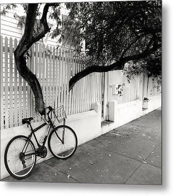 White Pickets Metal Print by Karen Wiles