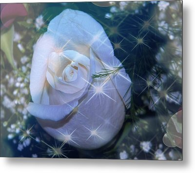 White Rose Metal Print by Michelle Frizzell-Thompson