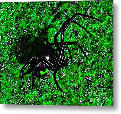 Wicked Widow - Green Metal Print by Al Powell Photography USA