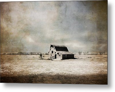 Wide Open Spaces Metal Print by Julie Hamilton