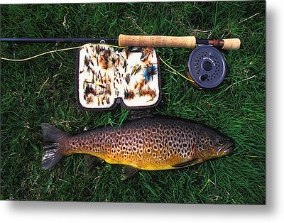 Wild Brown Trout And Fishing Rod Metal Print by Axiom Photographic