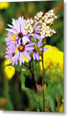 Wild Floral Metal Print by Marty Koch