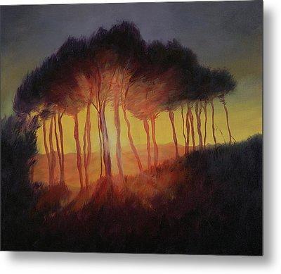 Wild Trees At Sunset Metal Print by Antonia Myatt