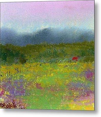 Wildflowers Metal Print by David Patterson