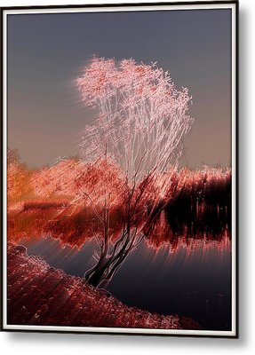 Metal Print featuring the photograph Wind by Irina Hays