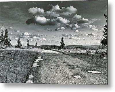 Metal Print featuring the photograph Winding Road by Mary Almond