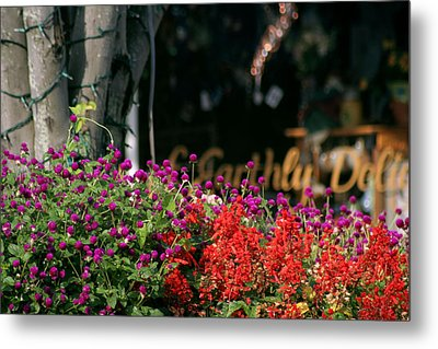 Metal Print featuring the photograph Window Box by Lou Belcher