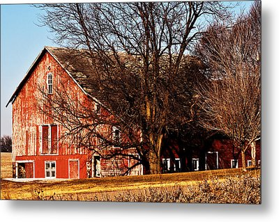Windows And Doors Metal Print by Edward Peterson