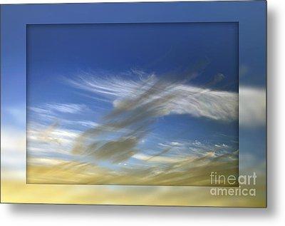 Windswept 2 Metal Print by Kaye Menner