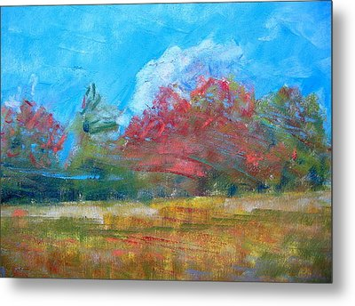 Windy Day Metal Print by Lisa Dionne