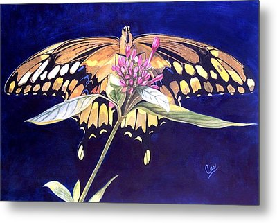 Wings Metal Print by Karen Casciani