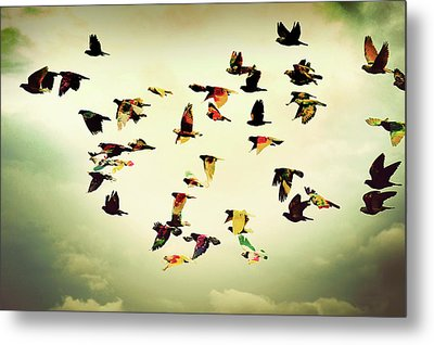 Wings Of Colors Metal Print by Manuel Orero Galan