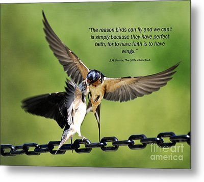Wings Of Faith Metal Print by Diane E Berry
