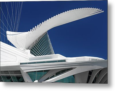 Wings Wide Open Metal Print