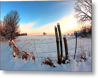 Winter 1 Metal Print by Fuad Azmat