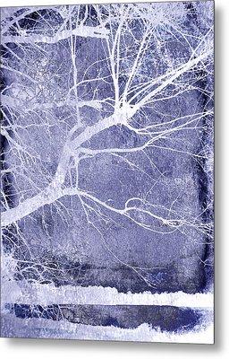 Winter Blues Metal Print by Ann Powell