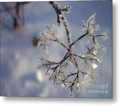 Metal Print featuring the painting Winter Crystals by Susan Fisher