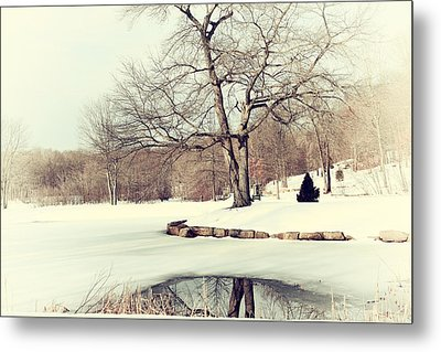 Winter Day In The Park Metal Print by Karol Livote