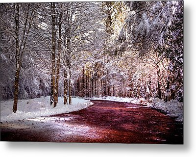 Winter Drive Metal Print by Anthony Citro