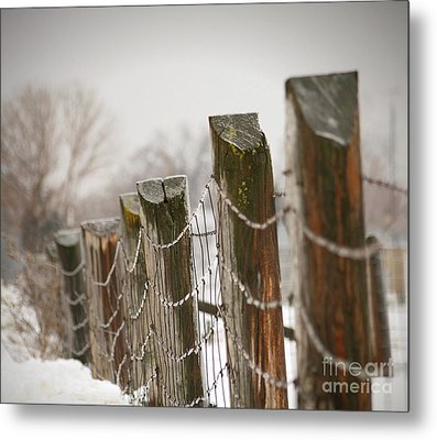 Winter Fence Metal Print